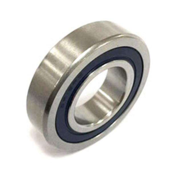 Cylindrical Roller Bearing SL182204 #1 image